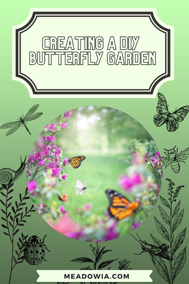 Creating a DIY Butterfly Garden pin by meadowia